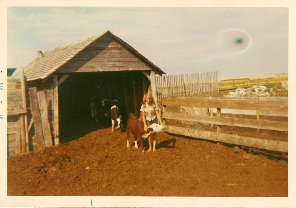 my mum and a calf.  She claims she never tipped any of the cows - she only watched as her cousins did so.