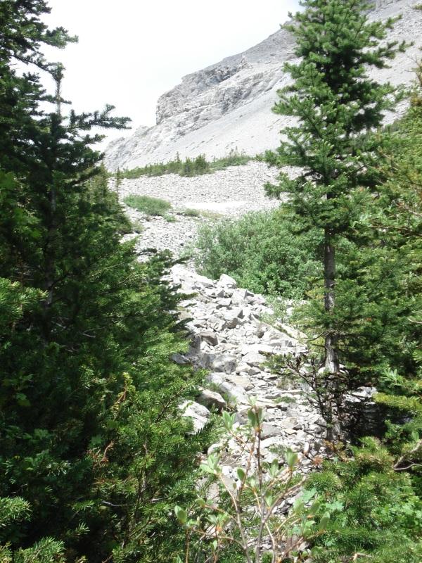 Alberta 2009 208